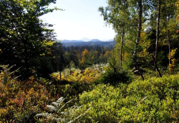 Podzimní krajinou